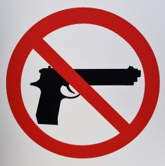 Gun Control - Jina Bazzar's Article