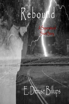 Book 5 Rebound Cover Darker Better Title